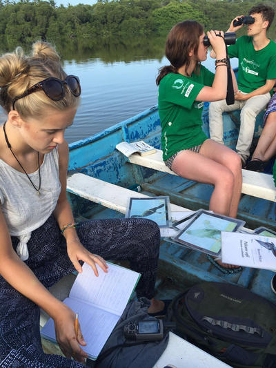 Research and data-collection form an important part of volunteering with animals in conservation
