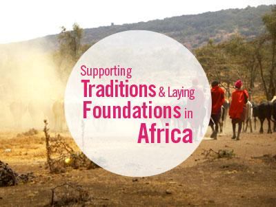 Options for combining 3 projects focused on teaching, building, and the community, in Kenya, Tanzania, and South Africa