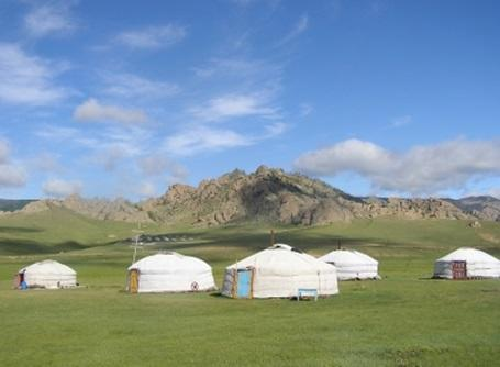 Volunteer Mongolia