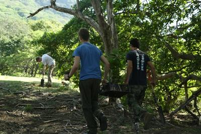 Volunteer with Projects Abroad on an Environmental Conservation project in Latin America & the Caribbean in the forest