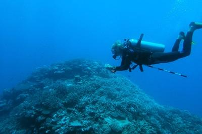 Volunteer working near the ocean on the Conservation project in the South Pacific with Projects Abroad