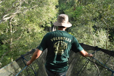 A student walks in the rainforest during a last-minute volunteer abroad trip to Peru, South America