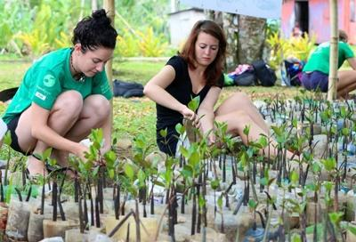 Voluntourism opportunities in the field of conservation in Fiji.