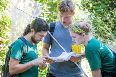 A group of recent gradutes volunteering abroad identify butterflies at the Conservation Project in Costa Rica
