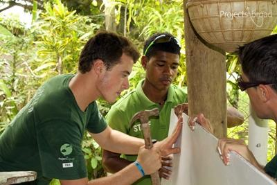 Projects Abroad volunteers help to construct a wall at a Care placement in Fiji during a Community Day