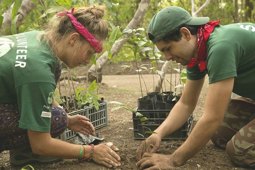 Projects Abroad Conservation volunteers plant a tree at Barra Honda National Park in Costa Rica.
