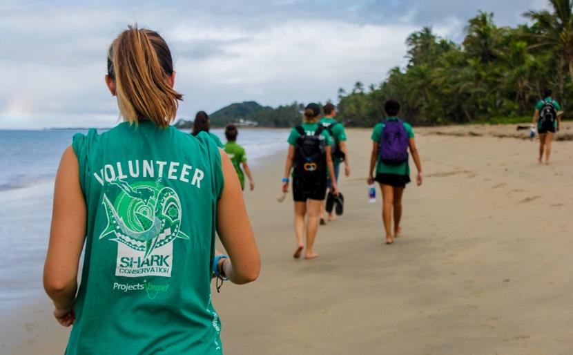 Volunteers walking along the beach during before beach cleanup