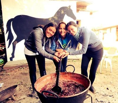 Volunteers work with horses on the Equine Therapy project in Argentina