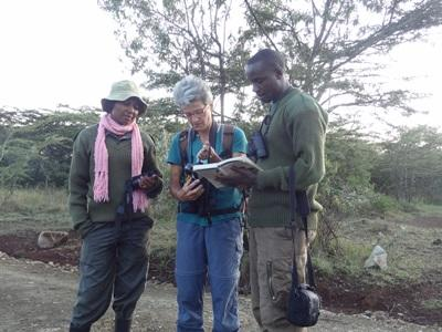 Volunteers and staff work on wildlife Conservation in Kenya with Projects Abroad