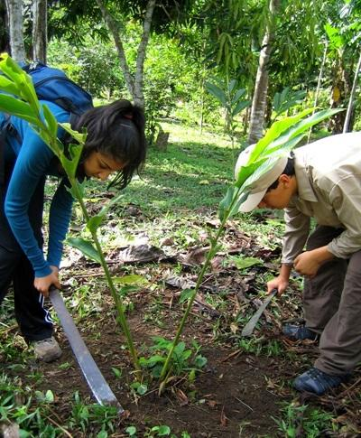Volunteers on the Conservation project in Peru inspect the lank in the rainforest
