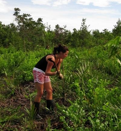 Gap Year students do Conservation work in Thailand with Projects Abroad