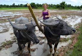 A volunteer takes part in traditional farming methods on the Khmer Project in Cambodia.