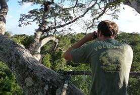 A volunteer observes wild birds in the Amazon, Peru during his Easter break.