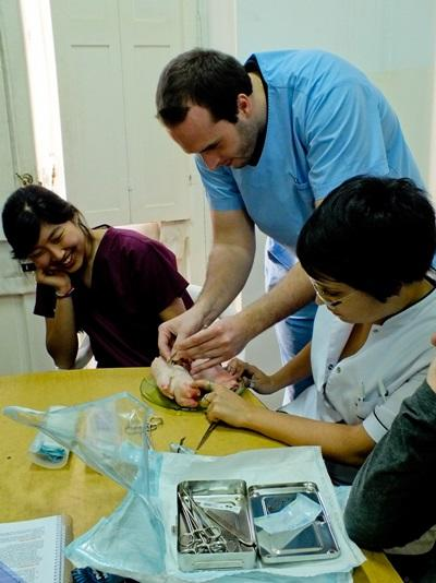 Medical Elective intern working in a clinic with kids in Argentina