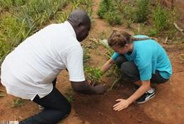 A volunteer on the Agriculture & Farming Project in Togo plants with a local staff member.
