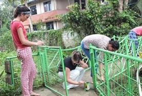 Volunteers on the Sri Lanka Care & Community High School Special paint a playground at their placement.