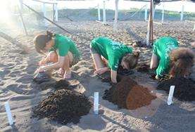 High School Special volunteers take part in the Conservation and Spanish Project in Mexico.