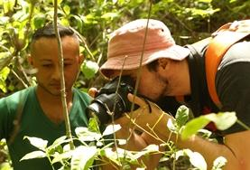 A Conservation volunteer on the Costa Rica High School Special plants a tree with a staff member.