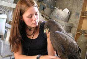 Intern on the Veterinary Medicine project takes care of a bird