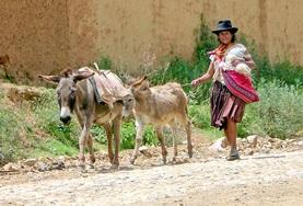 Learn about the rich culture of Bolivia bu joining the Spanish language course.