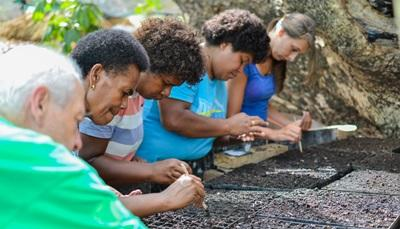 Projects Abroad Nutrition interns help Fijian villagers plant seedlings for vegetables in the South Pacific.