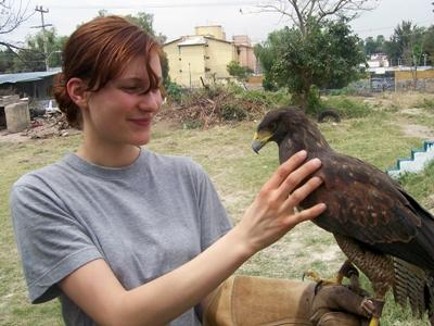 Volunteer on the Animal Care project treats a birds in a rehabilitation center