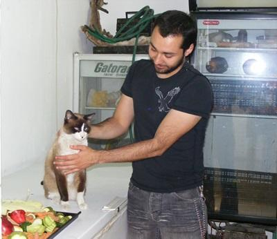 Inter on the Animal Care project takes care of a cat in a veterinary facility abroad