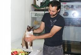 A local vet treats a cat in Mexico while Veterinary Medicine interns observe.