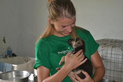 A puppy is cared for by a volunteer on an Animal Care Project